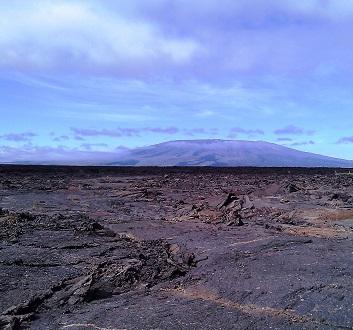 Ecuador, Galapagos, Isabela Island, Punta Moreno