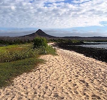 Ecuador, Galapagos, Santa Cruz Island, Cerro Dragon (Dragon Hill)
