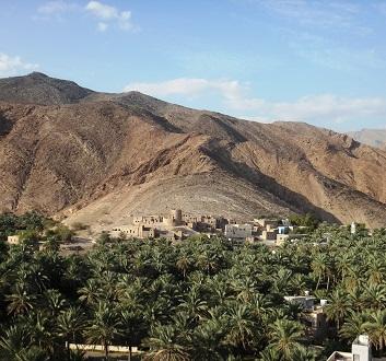 Oman, Birkat Al Mouz Village, Banana Plantations