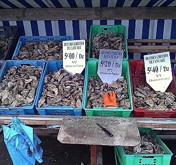 France, Brittany, Cancale, Oysters