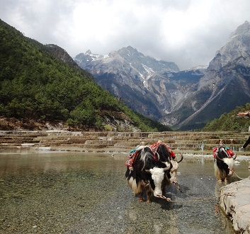 China, Lijiang, Jade Dragon Snow Mountain