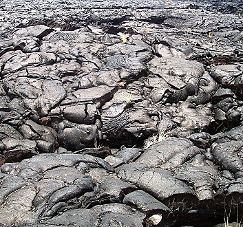 USA, Hawai'i Island, Kohala Coast, Black Lava Landscape