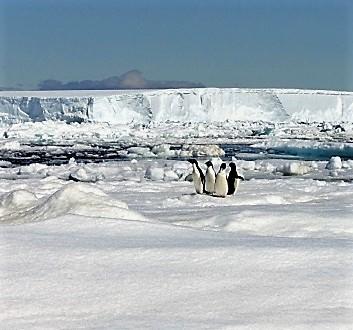 Antarctica, Fridtjof Strait