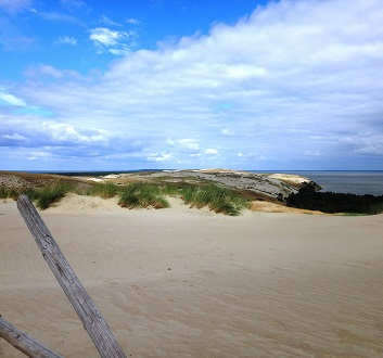 Lithuania, Curonian Spit, Sand Dunes