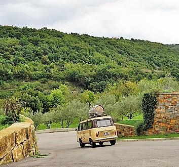 Slovenia, Istria, Lisjak Olive Farm