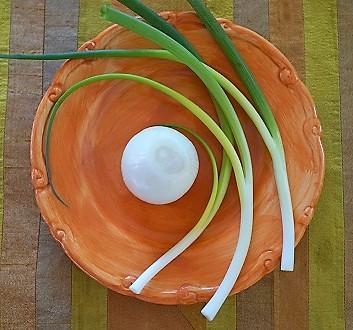 White Onion, Green Onions
