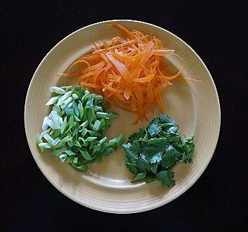 Green Onion, Carrot, Cilantro