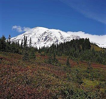 USA, Pacific Northwest, Mount Rainier National Park